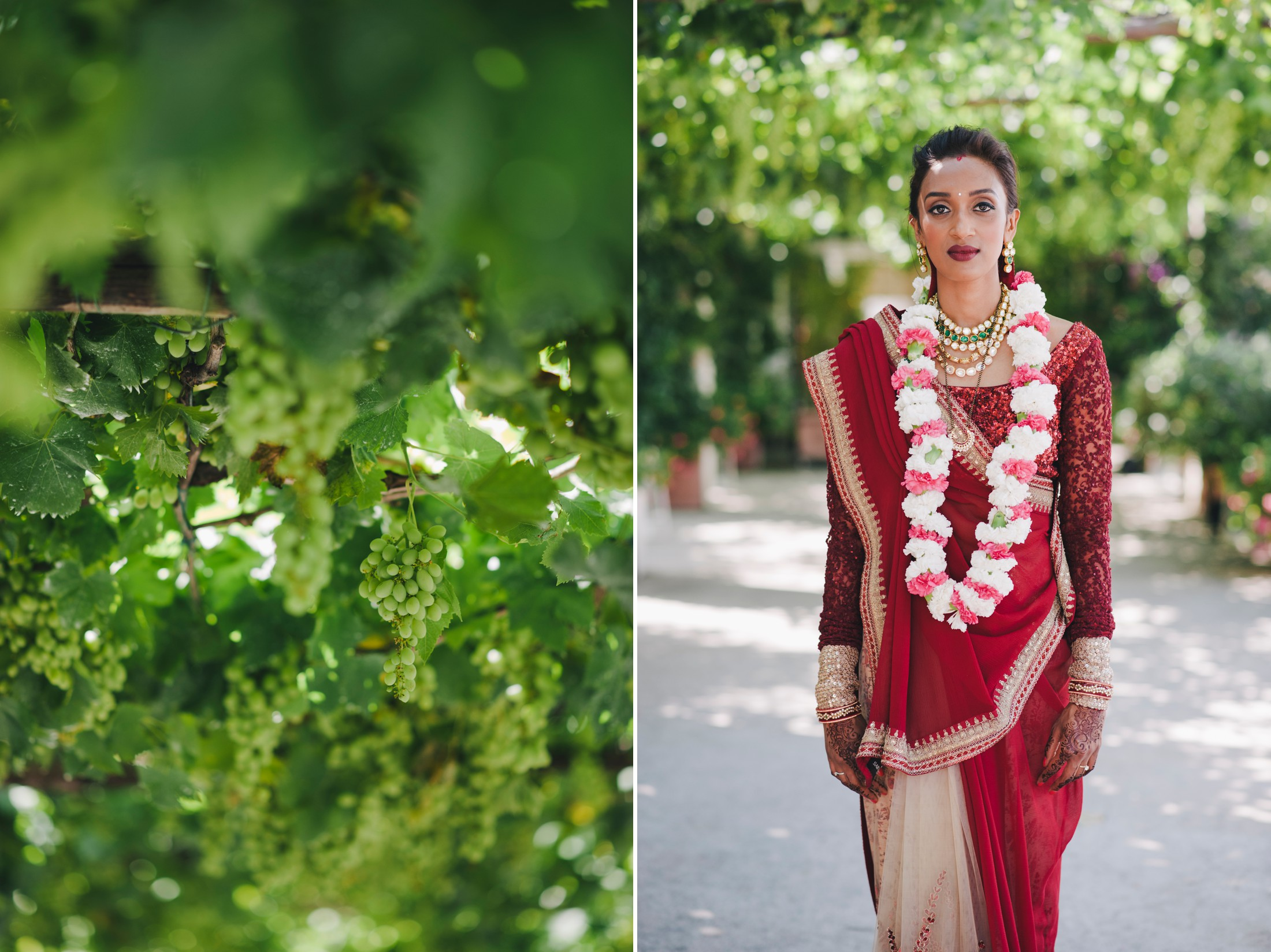 collage green grape trees and the bride with her red indian dress