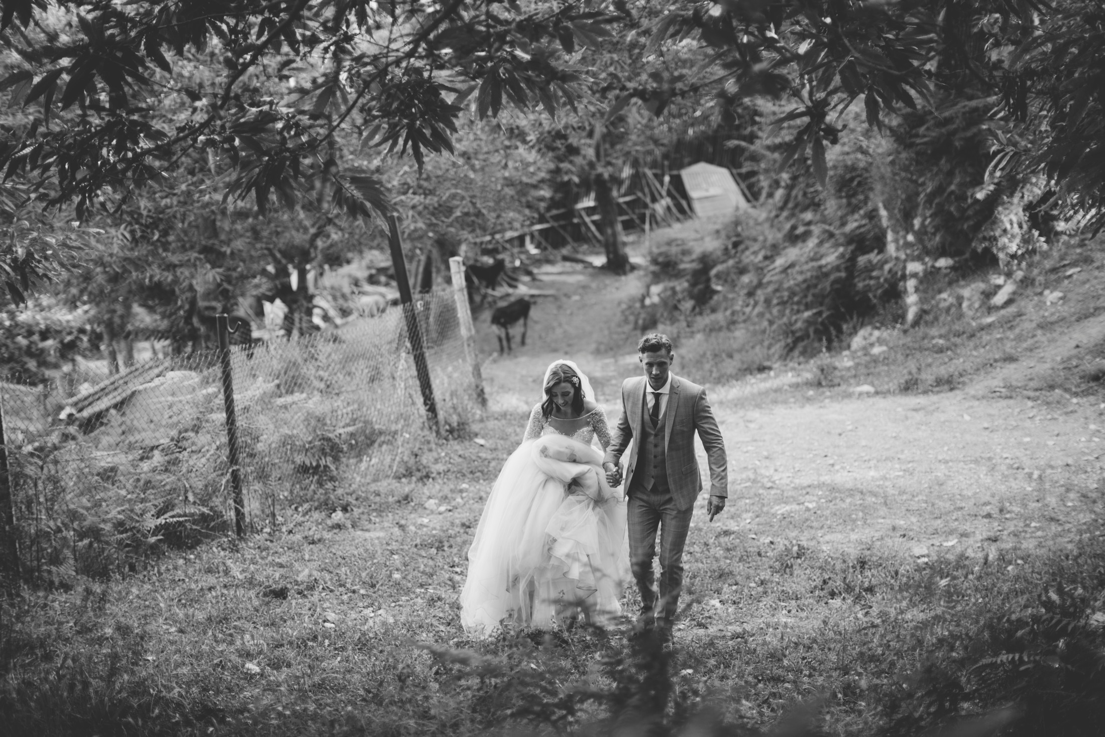 ravello wedding bride and groom walking hand by hand in a forest