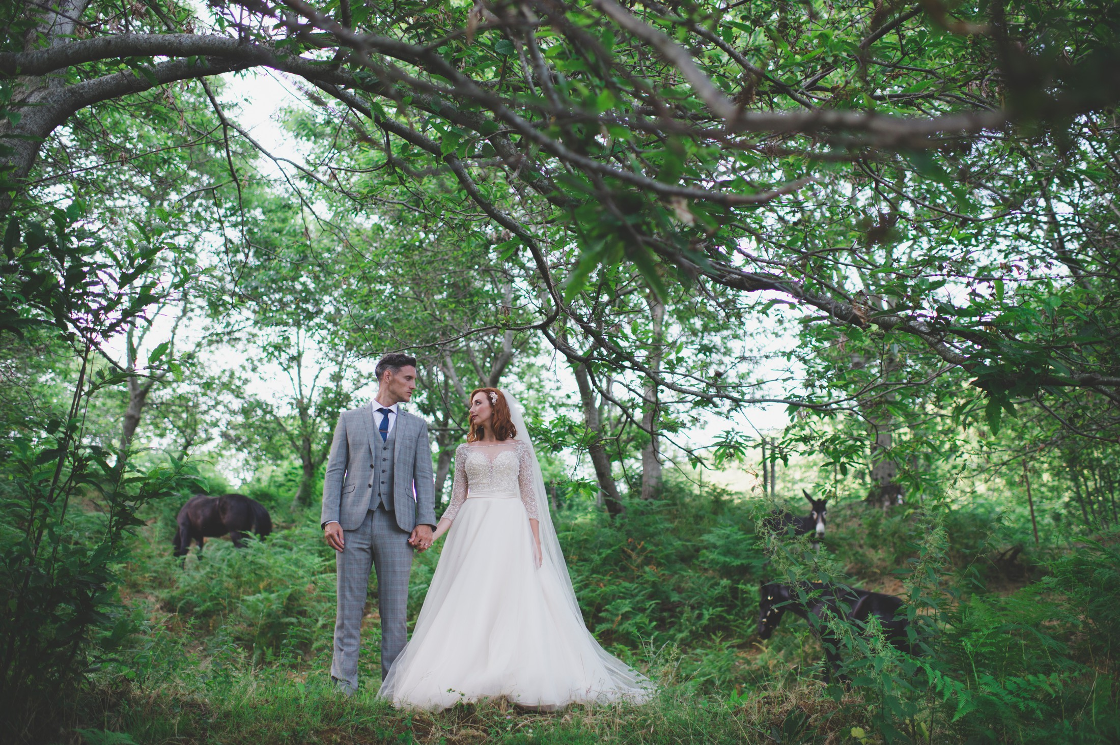 ravello wedding bride and groom's portrait standing in a chestnut field