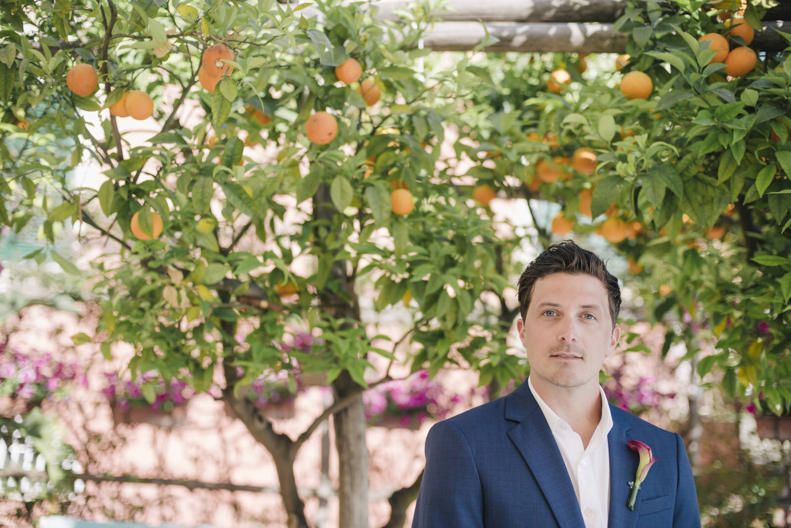 groom's portrait under an mandarine tree