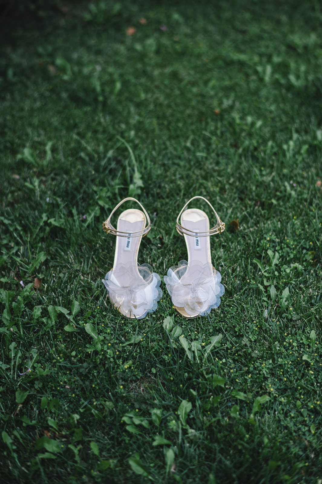 bride's shoes on the green grass