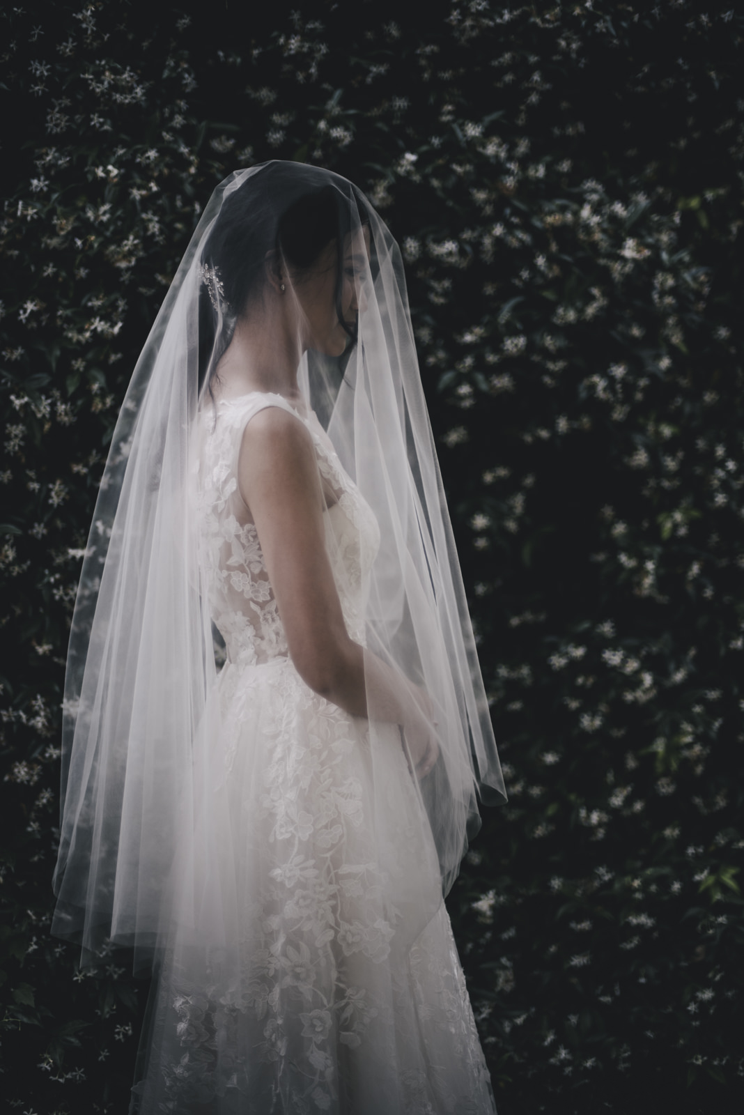 the bride with the wedding veil