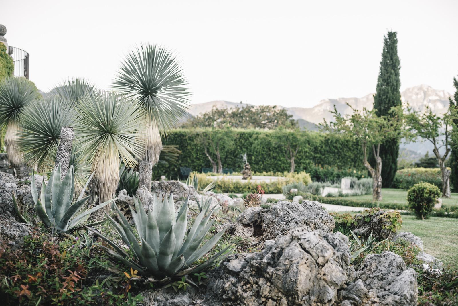 a garden in villa cimbrone