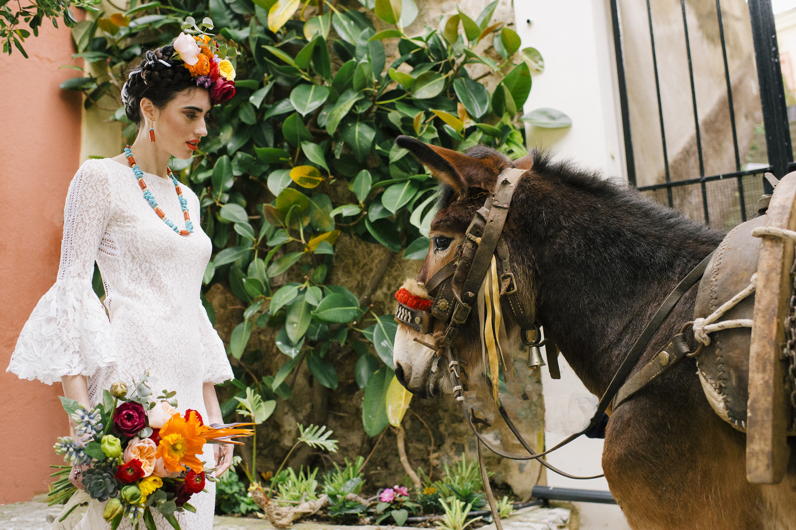 bride's portrait with a mule